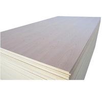 Multilayer Wood Furniture Composite Plastic Plywood